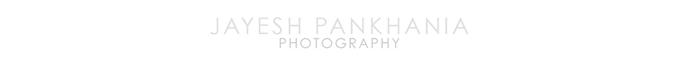 Hair, Macro and Beauty Photographer Jayesh Pankhania logo
